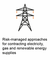 Risk-managed approaches for contracting electricity, gas and renewable energy supplies